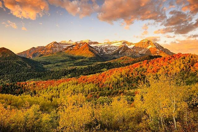 Just stunning. 📷 by @johnnyadolphsonphotography #postcardworthy #mountains #fall #sweaterweather #orange