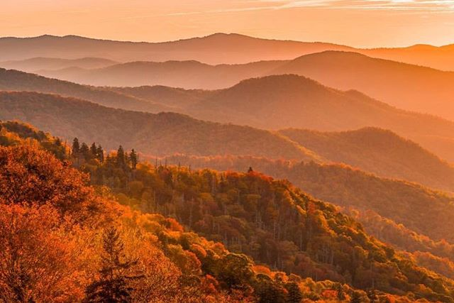 Fall colors are exploding in the #smokymountains  Thanks for sharing this shot @zack_knudsen  #postcardworthy #gsmnp #smokies #gatlinburg