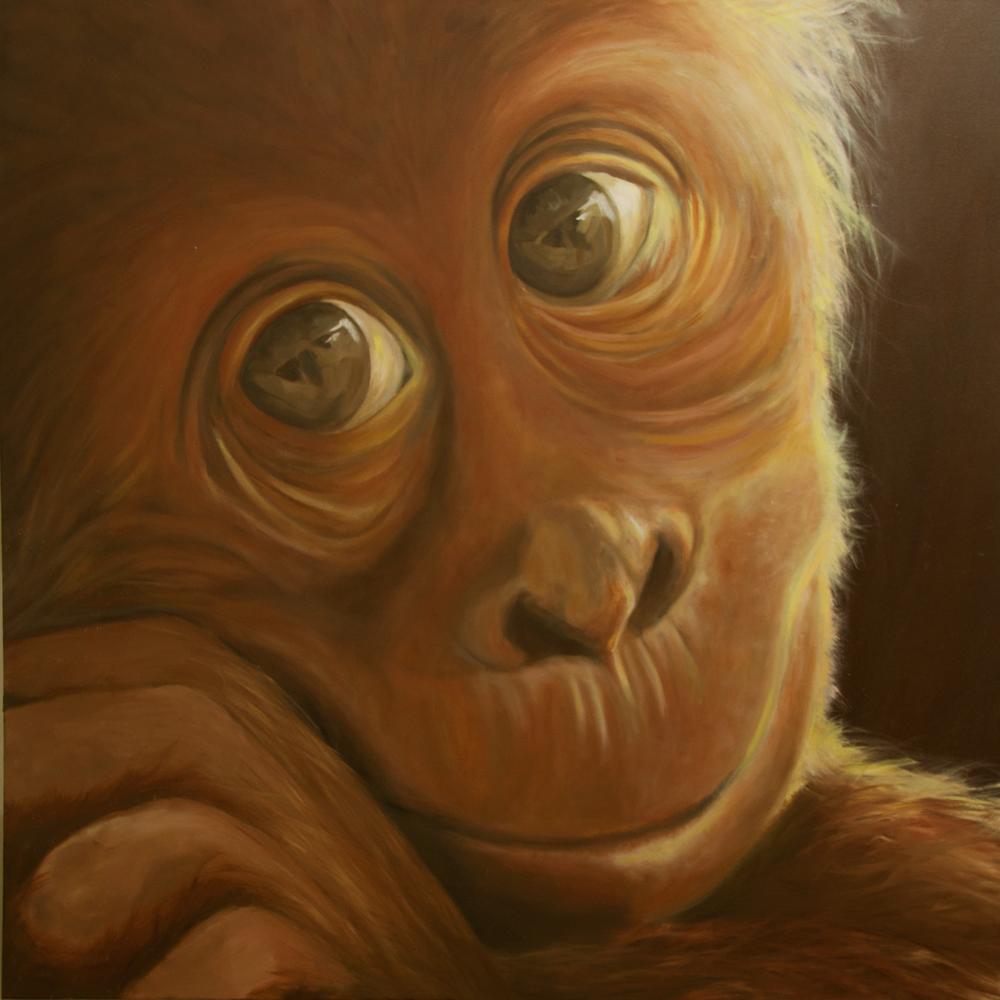 orangutanvib.png