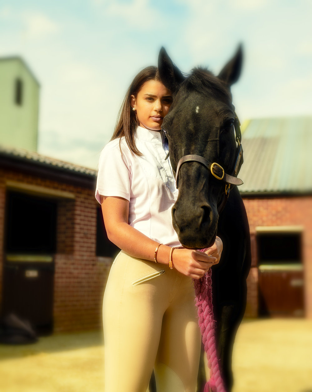 Studio Luxe, Suffolk - Horse & Equine Photography