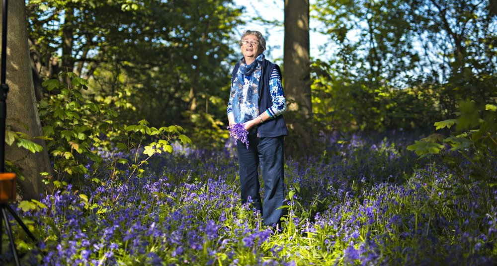 Growing up Wild campaign for the Suffolk Wildlife Trust - Margaret Jay in her favourite bluebell field, Gunton Wood, Lowestoft.