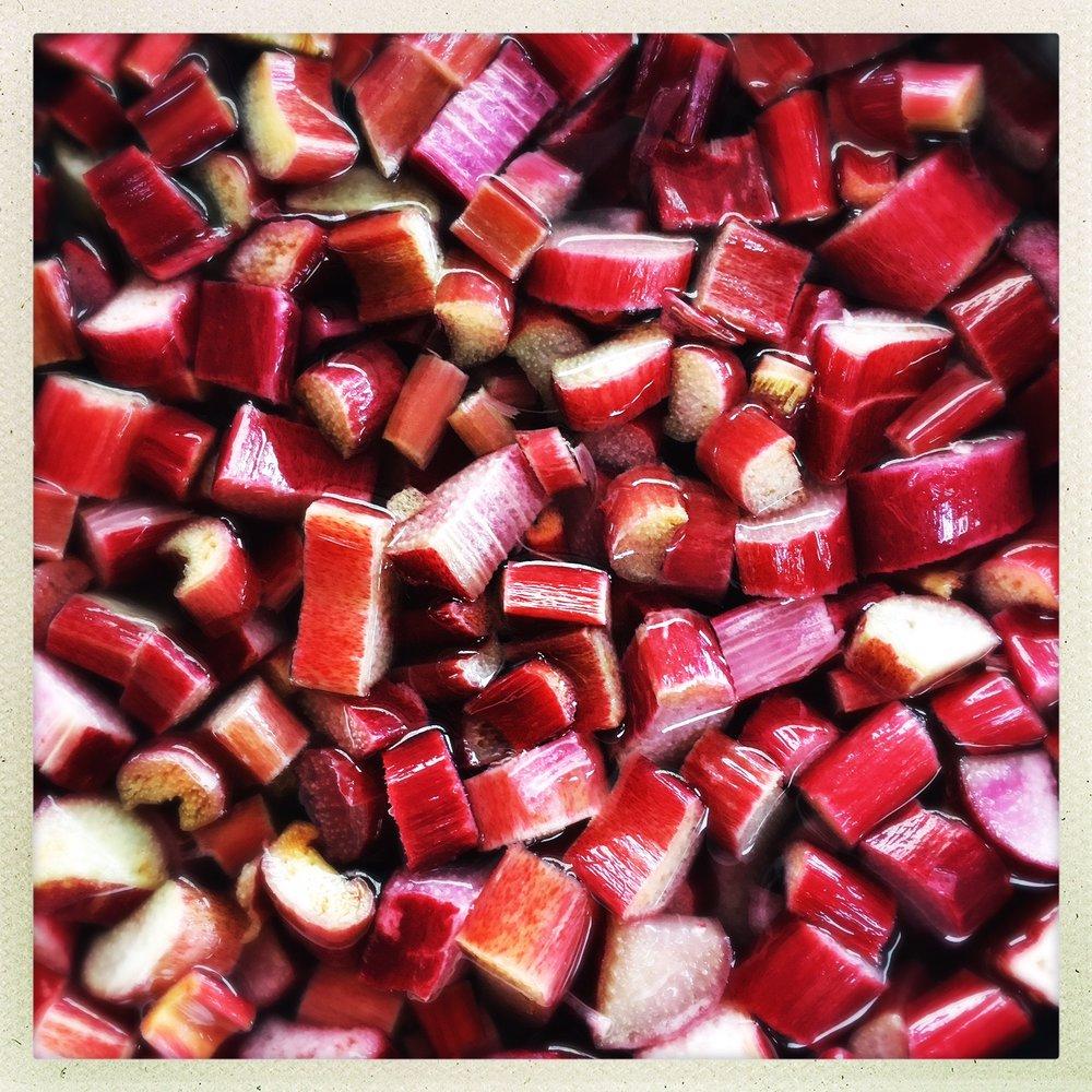 fresh rhubarb.jpg