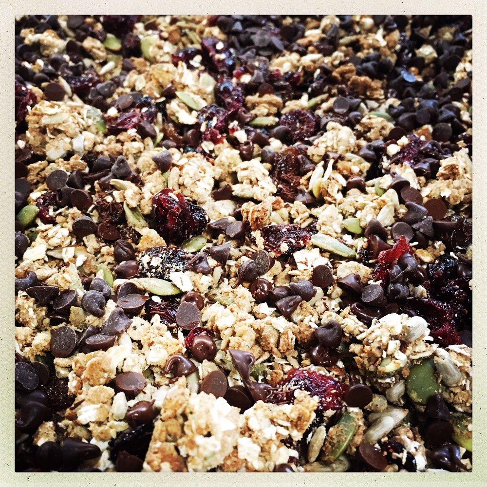 chocolate seed protein granola.jpg