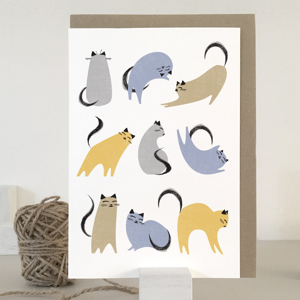 Multi-colour cats card: KC02