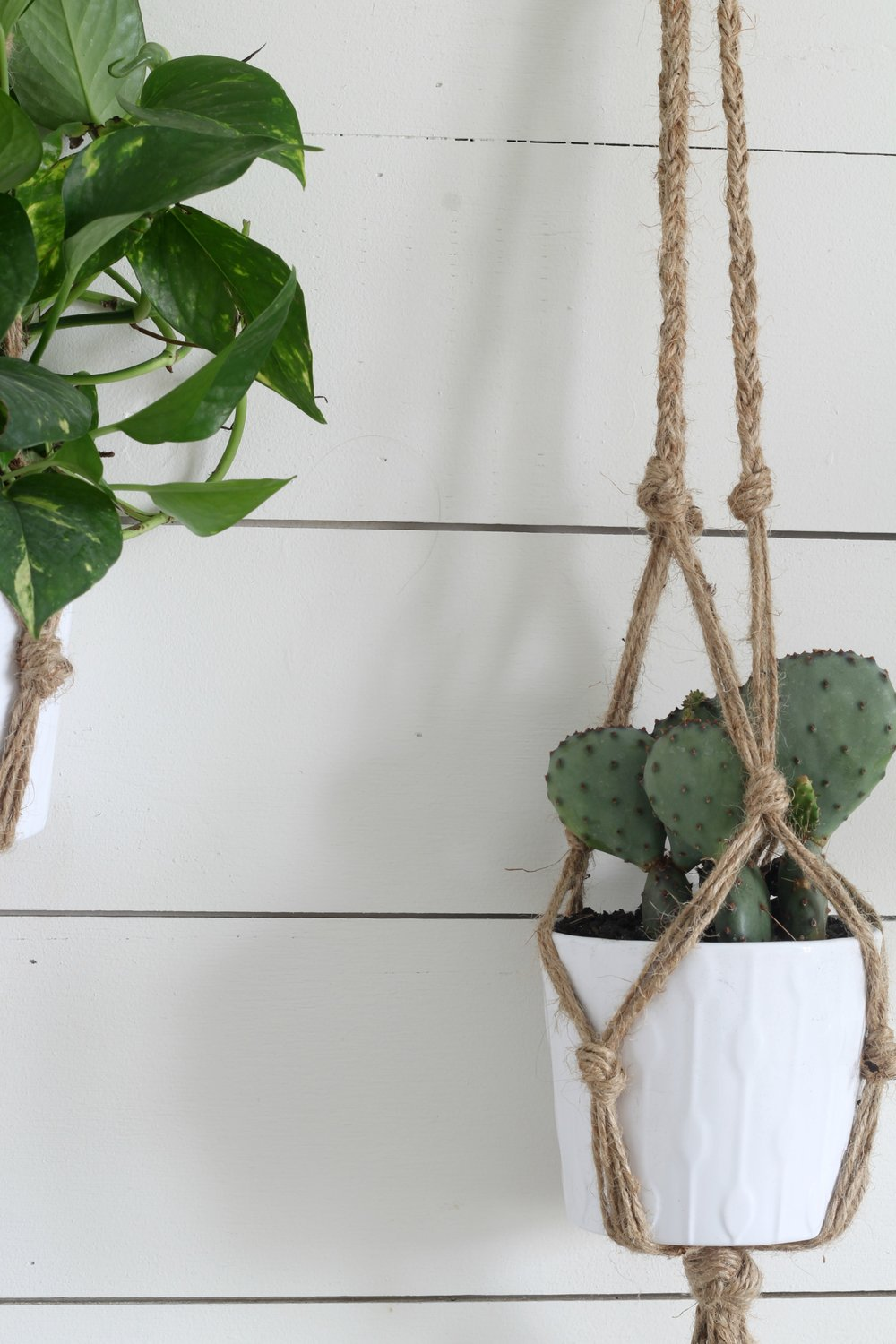 Simple DIY Macrame Plant Hnager