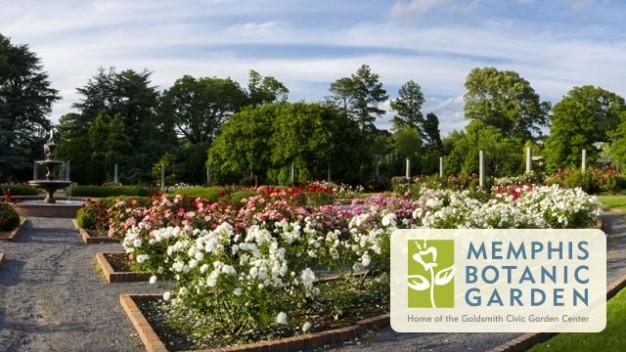 memphis-botanic-gardenl.jpg