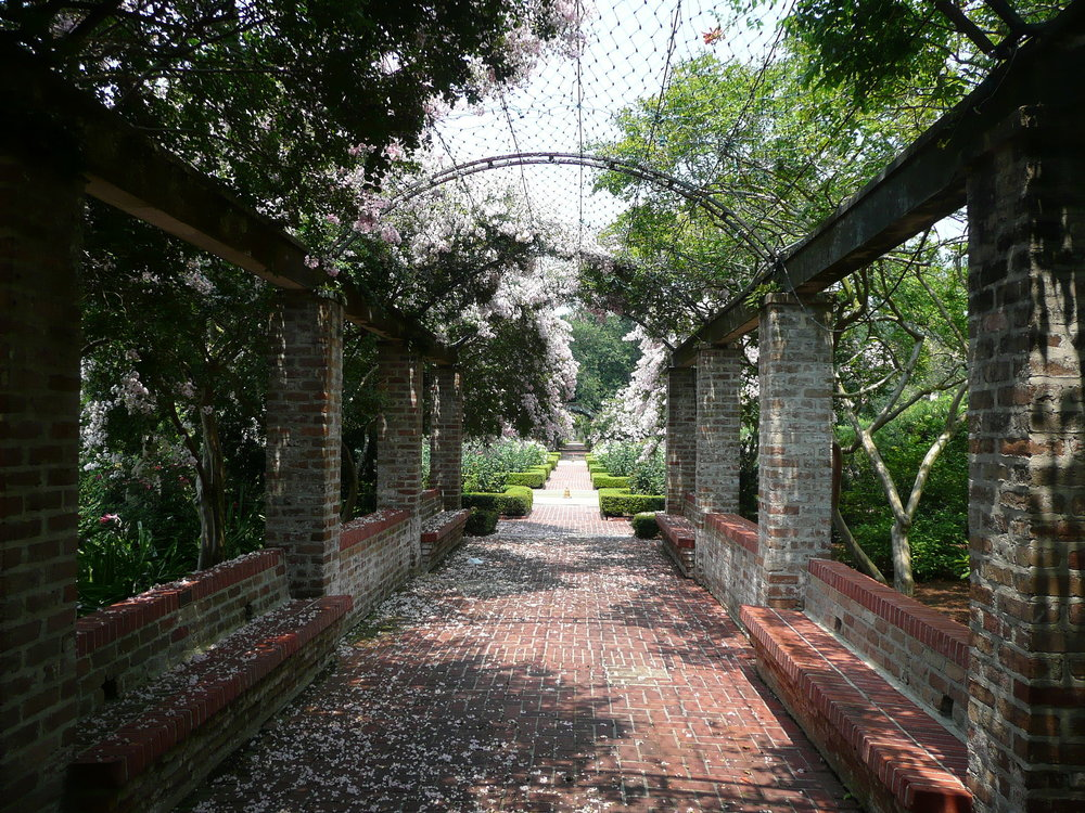 New_Orleans_Botanical_Garden_Walkway.jpg