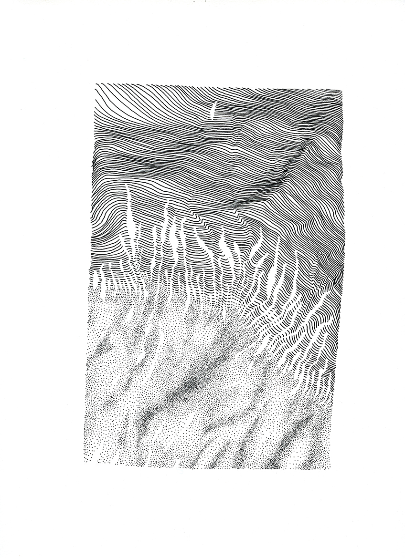 cf016_small.jpg