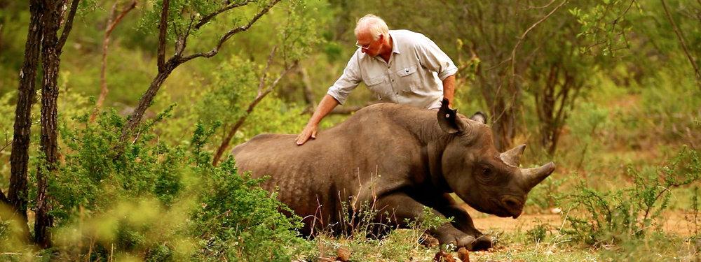 Image: World Wildlife Fund