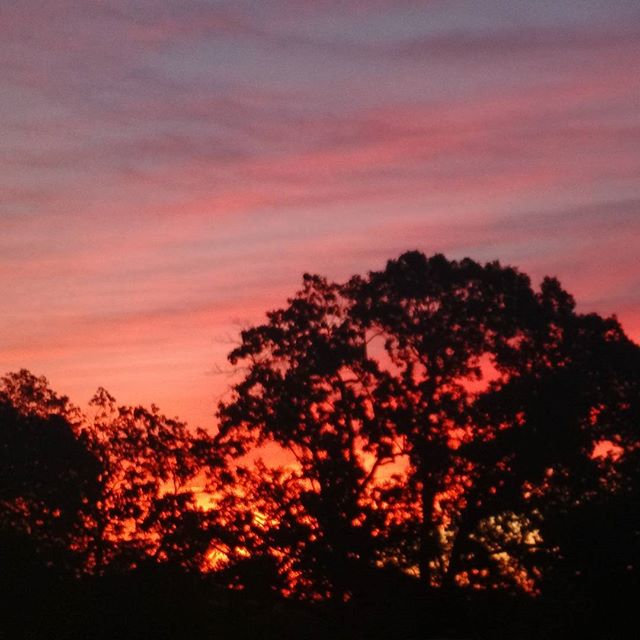 #Yale #sunrise