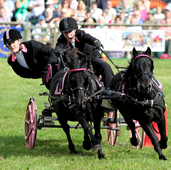 © The Royal County of Berkshire Show