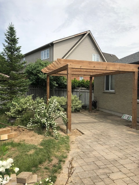 New pergola construction