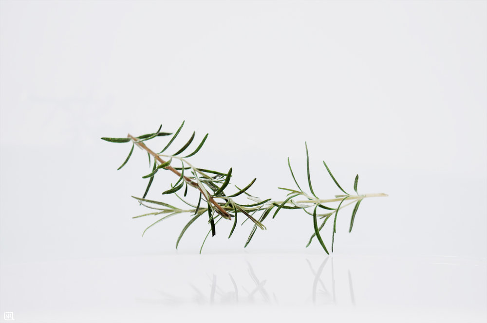 nh-art :     Rosemary, reflecting on the finiteness of being
