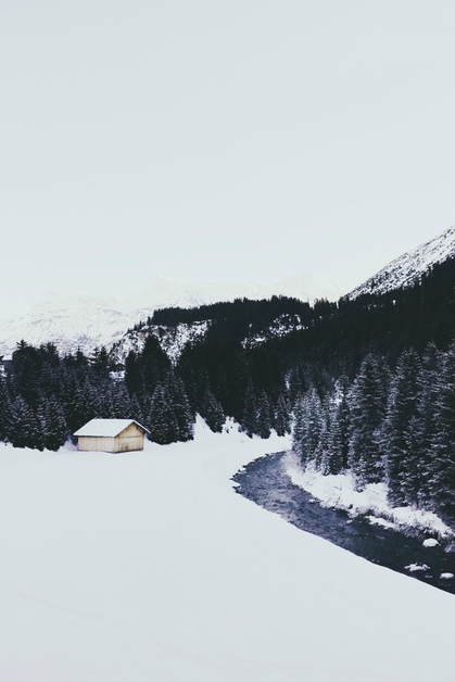 expressions-of-nature :      by  j.oskr