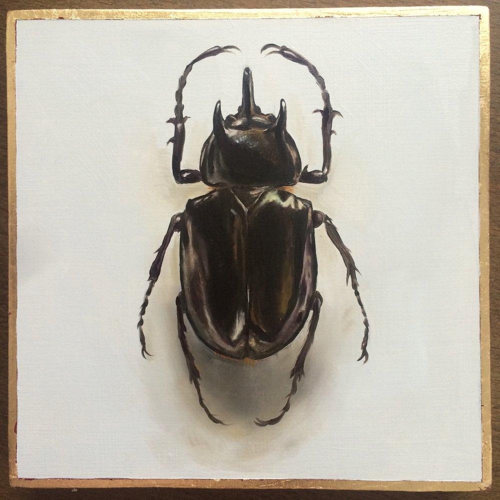 """idazwells :     Rhinoceros beetle  Oil on wood with gold leaf border   6x6""""  Ida Floreak 2015"""