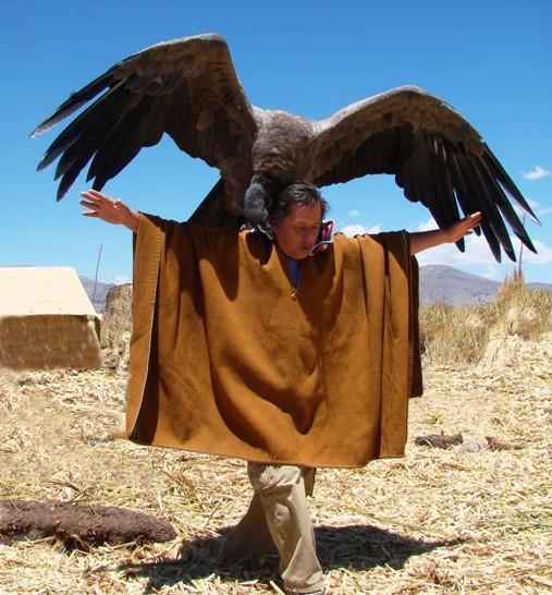 wkallpa :   Quechua man and Andean Condor.