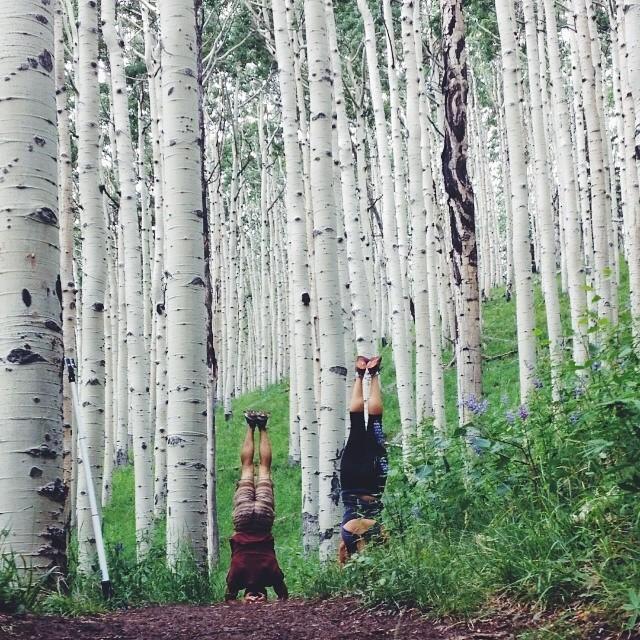emilyellisyoga :     Tree people