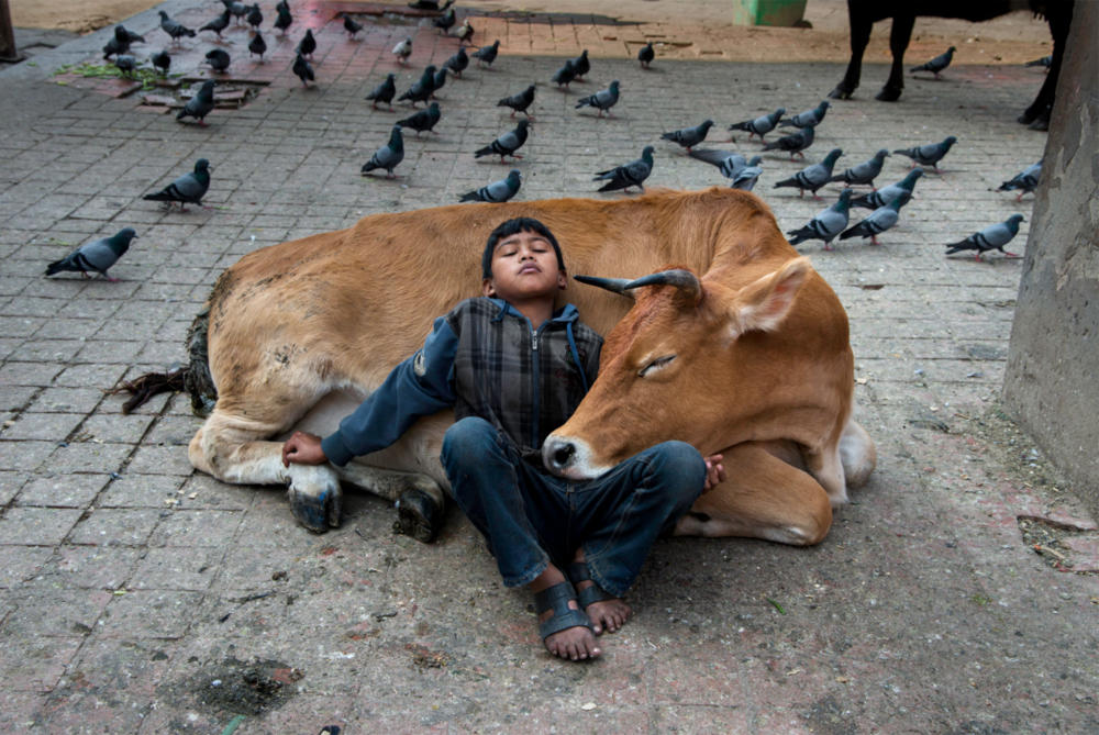 Nepal, Steve McCurry
