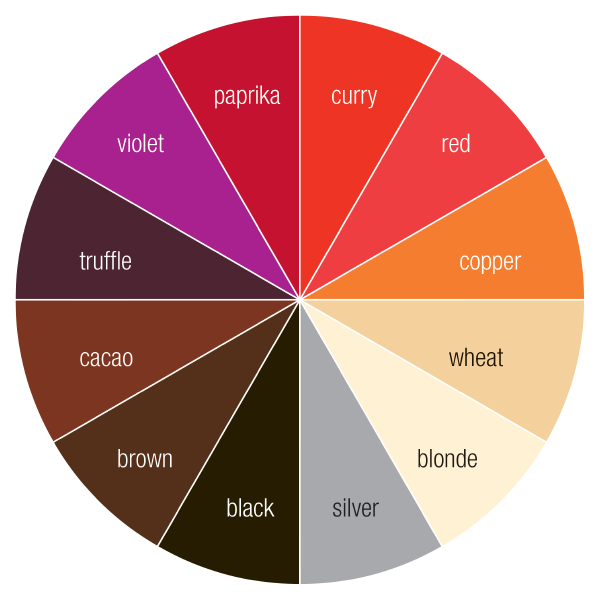 CC_Color Wheel-01.png