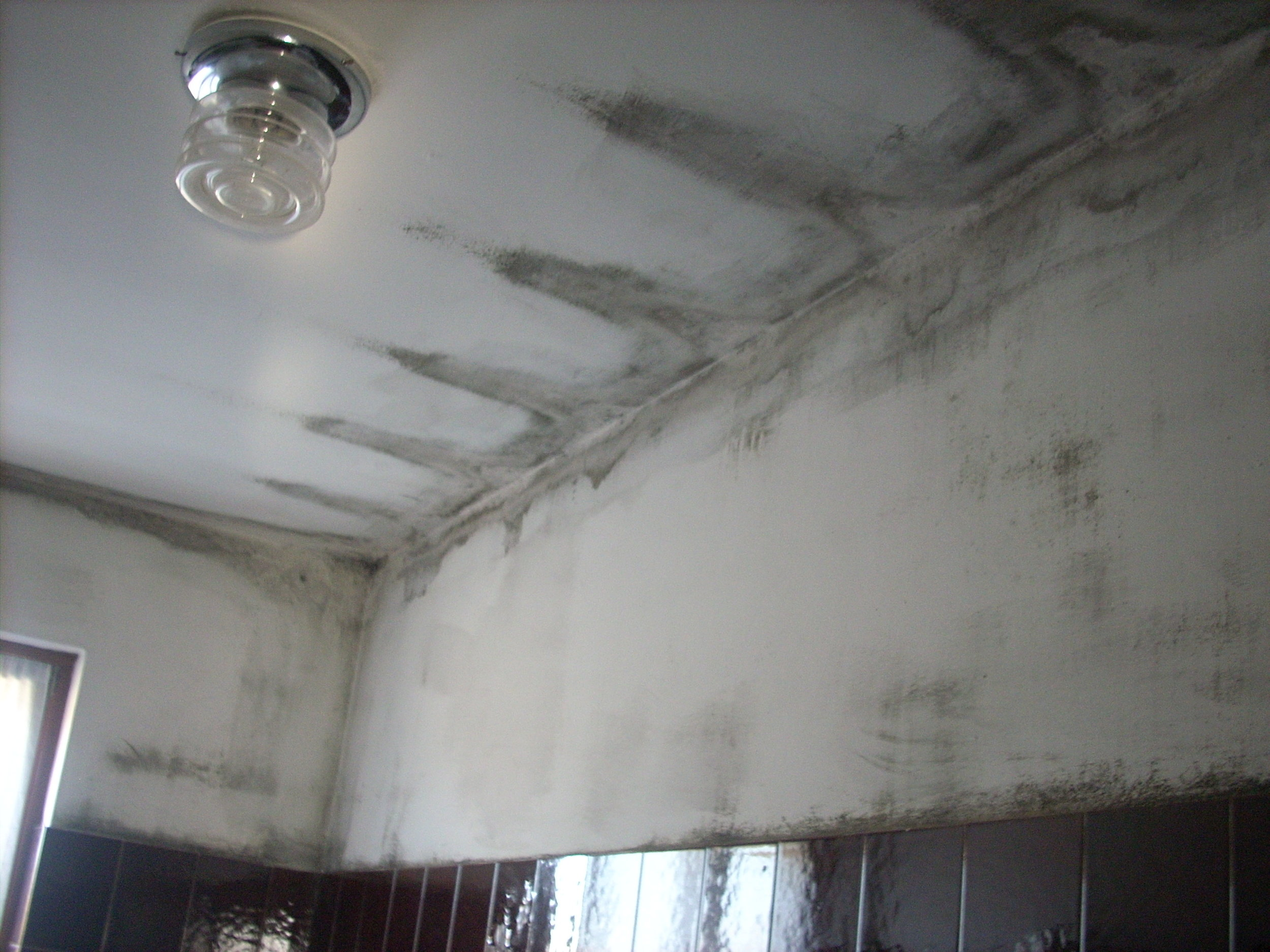 Mold caused by a thermal bridge and lack of ventilation - photo by Damiano Chiarini