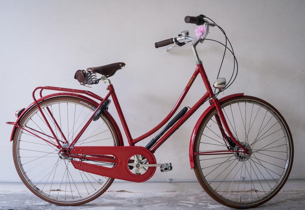 de fietserie (21 of 42).jpg