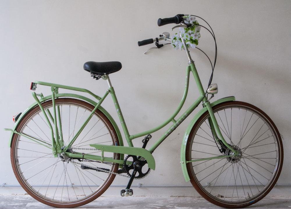 de fietserie (22 of 42).jpg
