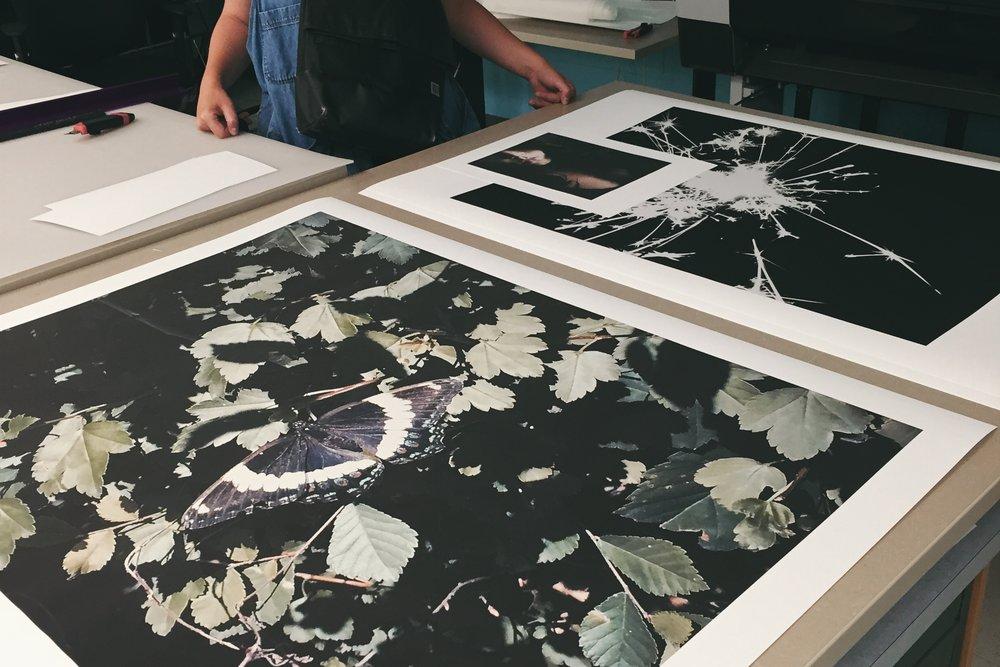 print lab-2-2.jpg
