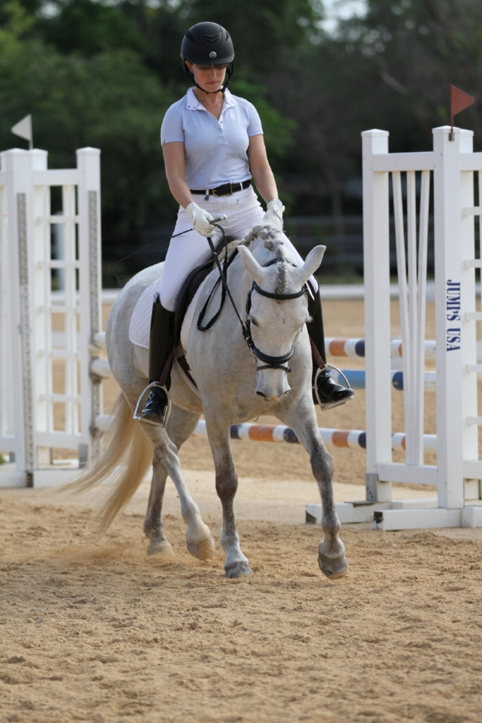 Cayman Islands Equestrian Center Pony, Blue Ridge Dream On