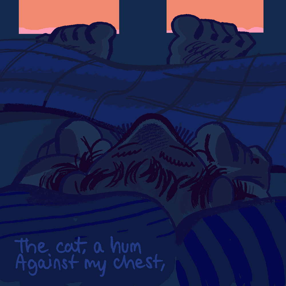 Sleep_5.png