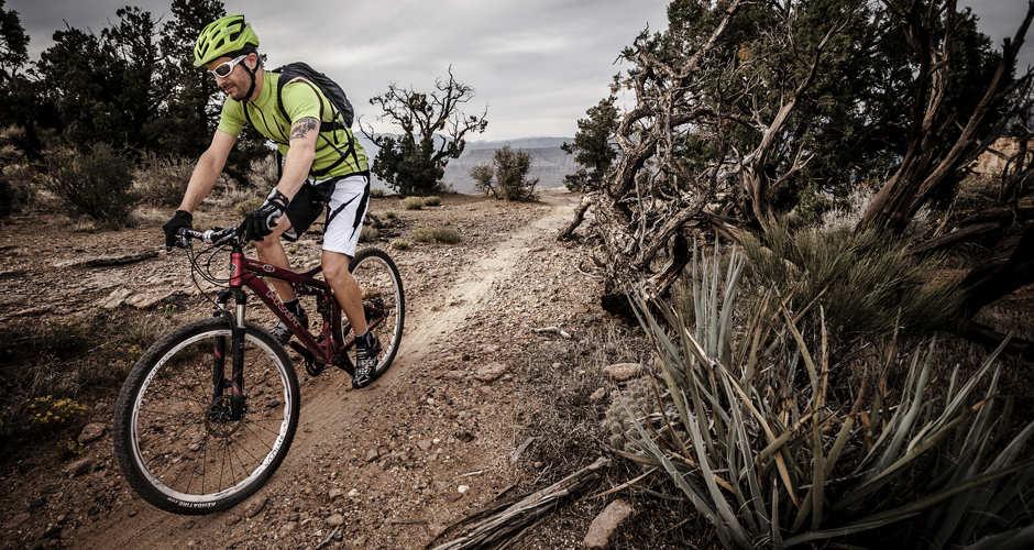 gooseberry biking.jpeg
