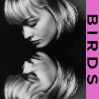 BIRDS-570x570.jpg