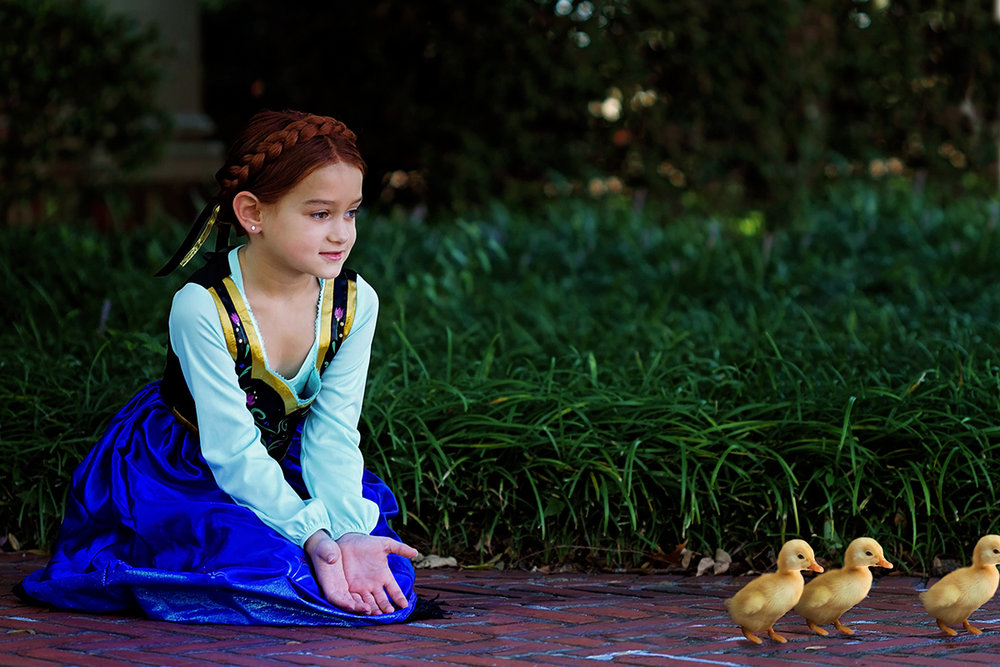 Frozen Theme Shoot Anna helping Ducklings .jpg