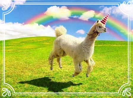 how I imagine alpaca's see themselves.