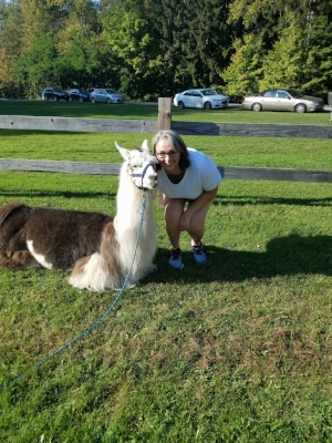 Our aothor at a local llama fest