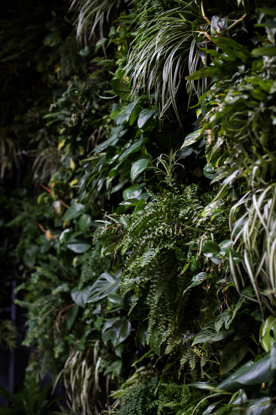 Modern Romantic Jungle Styled Shoot at The Woodshed-Bridal Shoot-0022.jpg