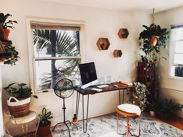 Morning sunshine in the most lovely studio I've ever had! 🌿✨