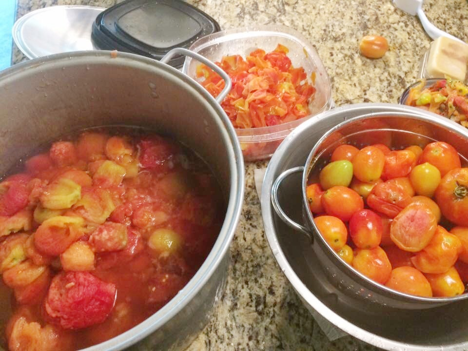 Canning - tomato processing.jpg