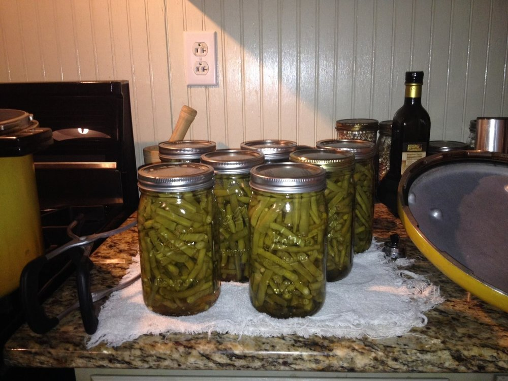 Canning - green beans.jpg