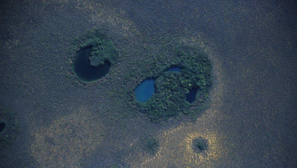 Cenotes Sian Ka'an ©2016 Sam Meacham