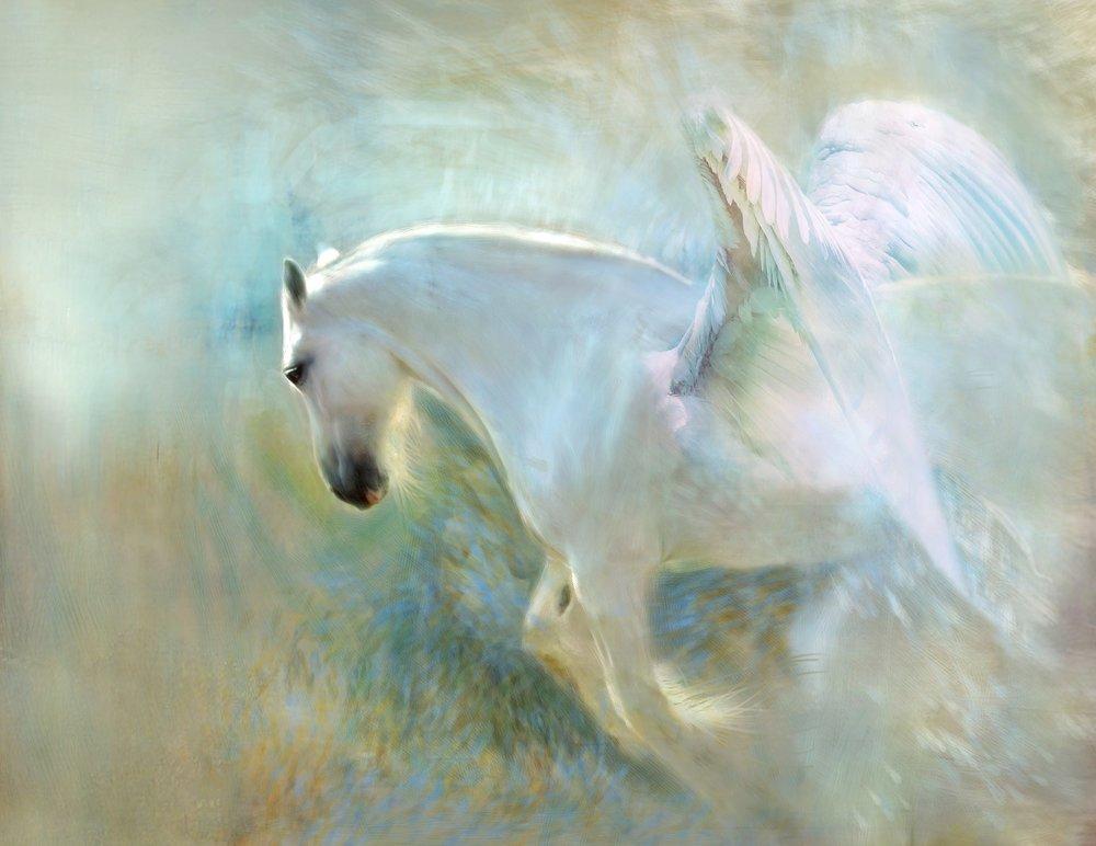 The Book of Prophecies — Sacred Spirit Shaman