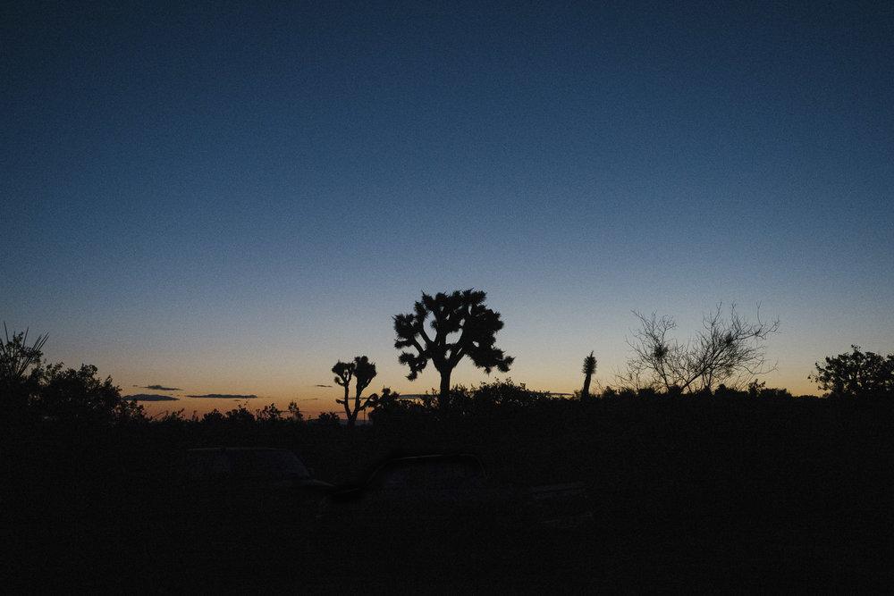 Josua TreeNational Parks - ASSOCIATION