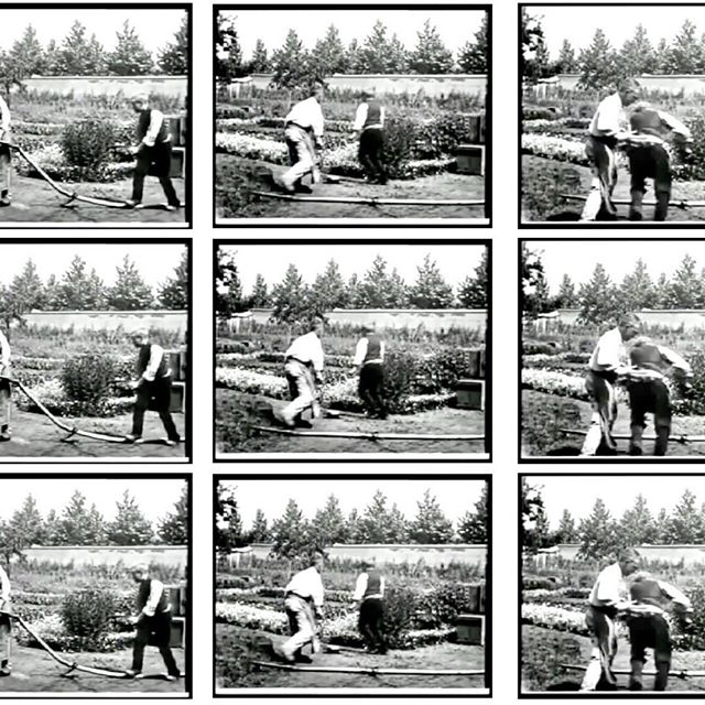 Since the Lumiere Brothers' 'Arrival of the Train' in 1896, cinema, deeply rooted to our archaic need for storytelling, has been entangled with the human condition. It is worthy to note that the brothers' first films were about children. - Stills from The Sprinkler Sprinkled 1895 - Louis Lumiere
