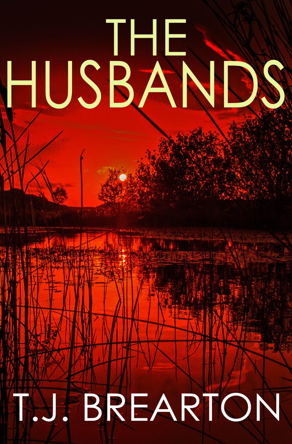 THE+HUSBANDS+cover+3.jpg