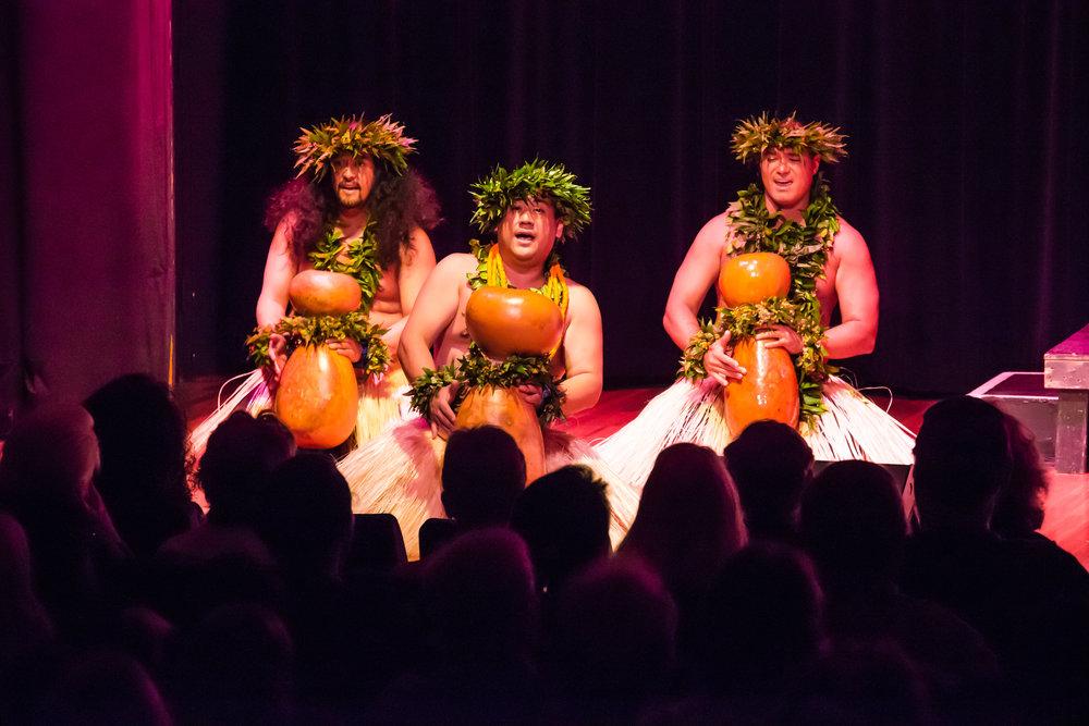 Pua Aliʻi ʻIlima