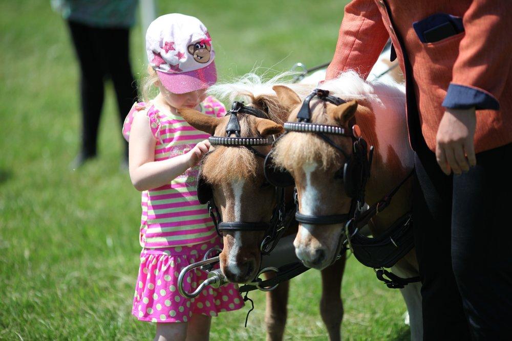 Ponies and Girl.jpg
