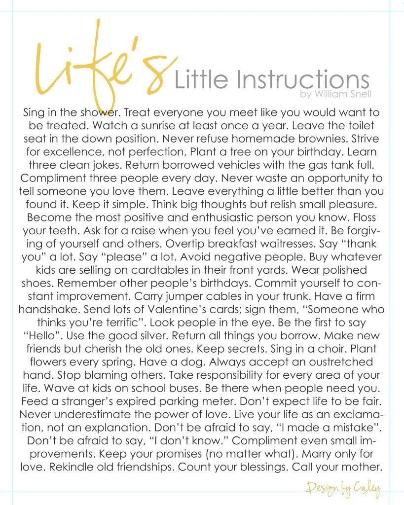 LifesLittleInstructions
