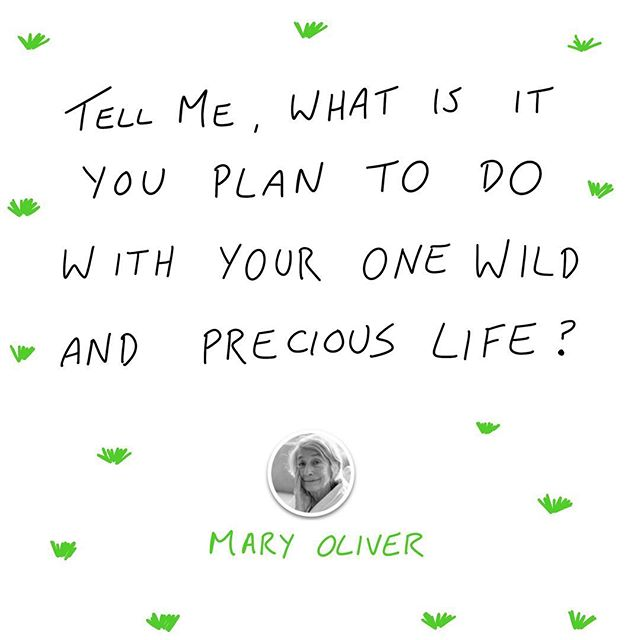 Thank you Mary Oliver for being such an inspiring optimist! ❤️🌲📚