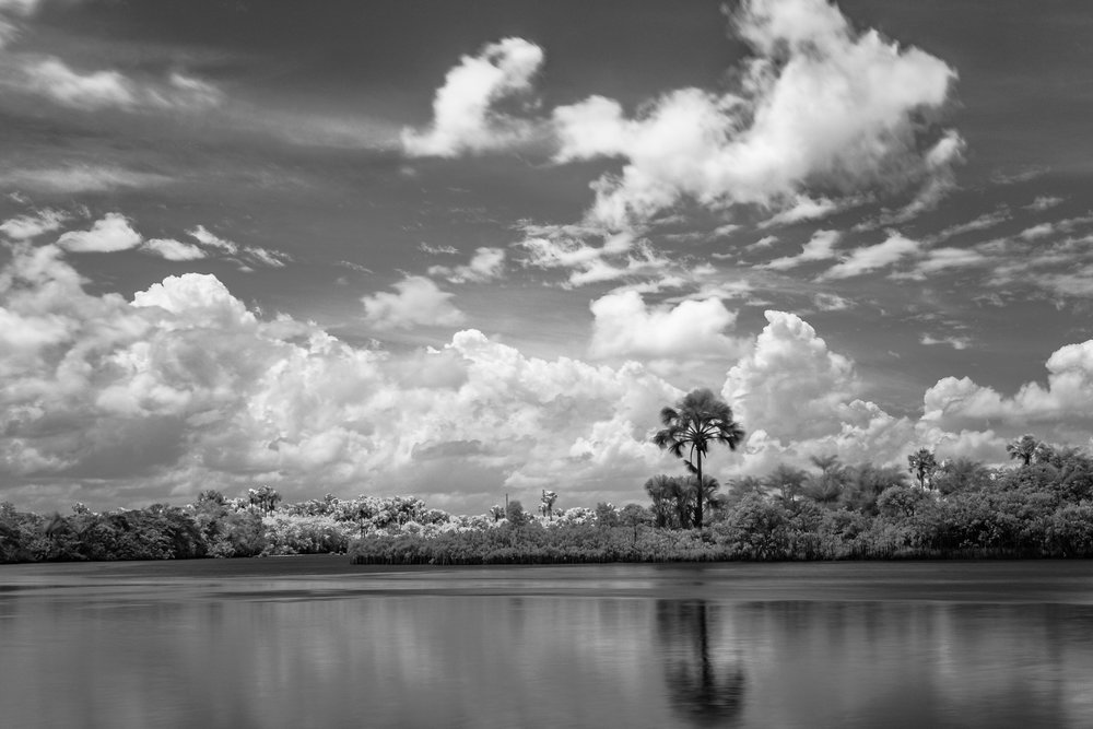 Scott_Myers_Brazil_Infrared-0944.jpg
