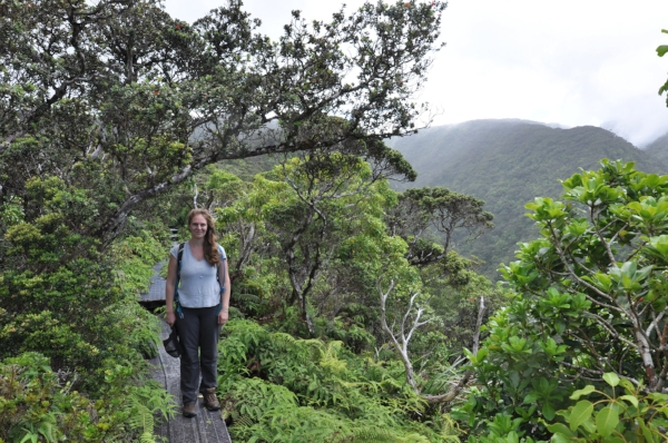 Erin Datlof, M.S. Botany, University of Hawaiʽi at Mānoa. Erin is a CREST molecular lab technician working with myself, Jolene Sutton, and Misaki Takabayashi. Erin is interested in Hawaiian community ecology, coevolution, and adaptive radiations.