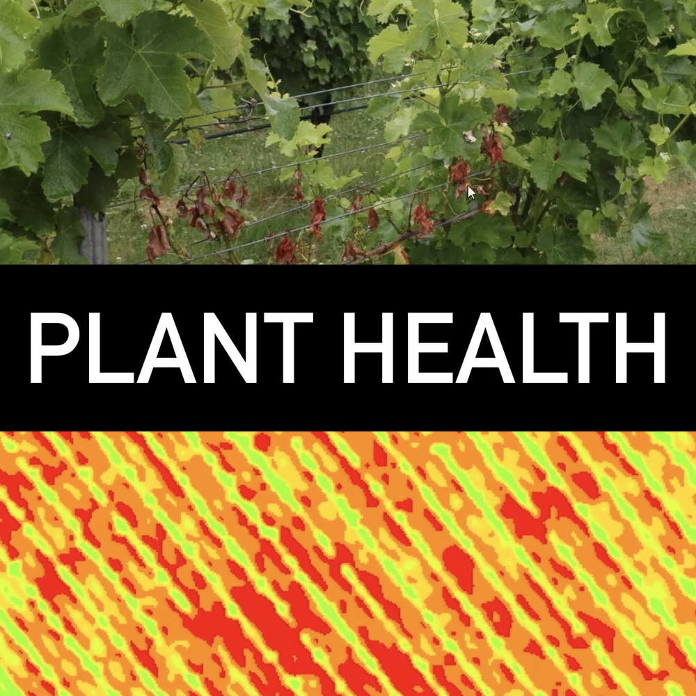 Monitor plant health throughout the season by utilizing NDVI data to identify infestations or over stressed plants.   - A sugar beet grower in Idaho used drones to detect pests and prevent lost revenue of nearly $60,000 on his 185 acres of sugar beet crop.Learn more  here